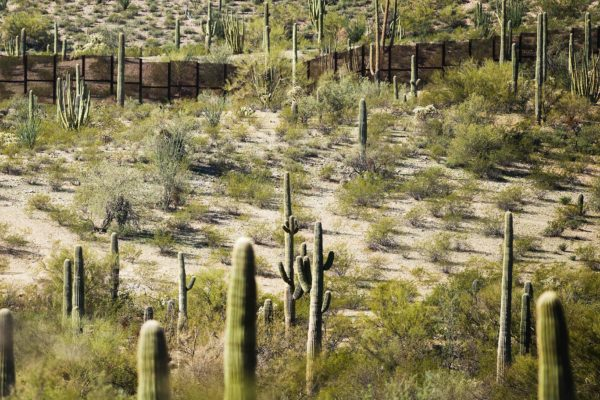 The United States-Mexico border running through Organ Pipe Cactus National Monument near Lukeville, Ariz.Credit...Jim Watson/Agence France-Presse